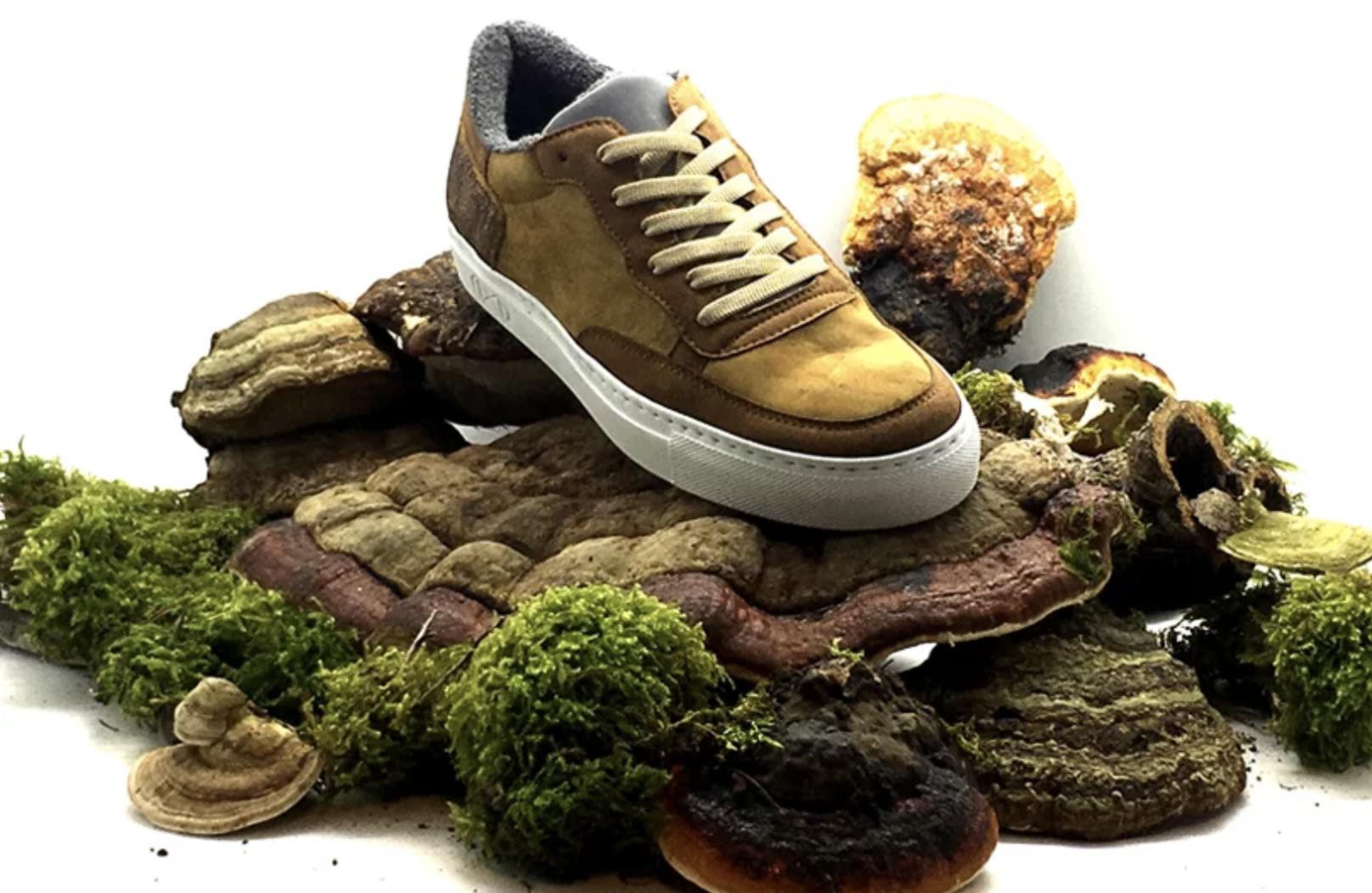 mushroom leather sneaker