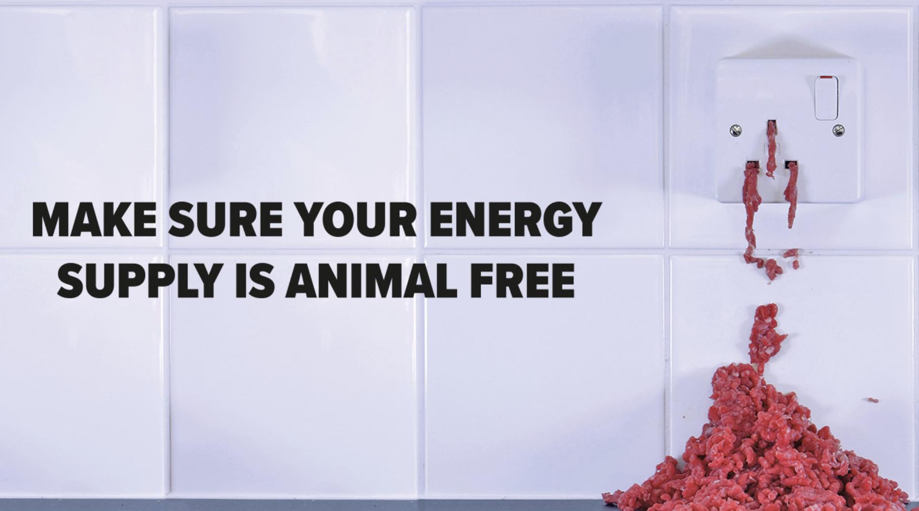 ecotricity vegan electricity tariff