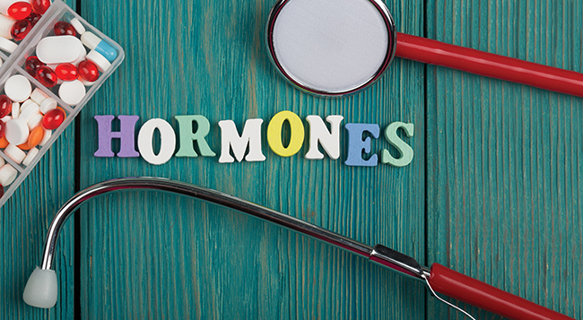 vegan diet effect on hormones