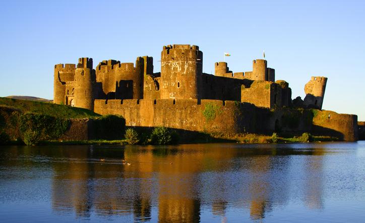 Caerphilly Castle birds shot by cadw