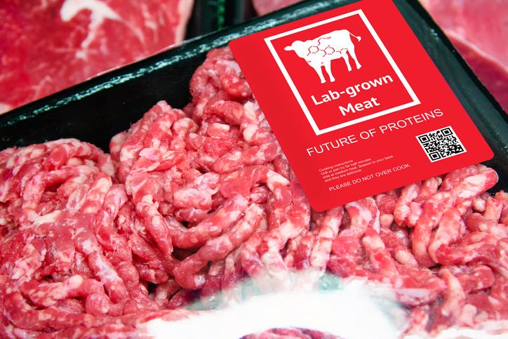 is lab meat vegan