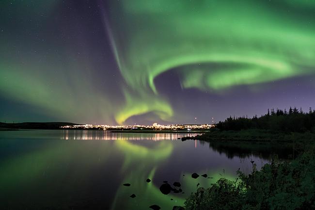 A vegan's guide to Reykjavik