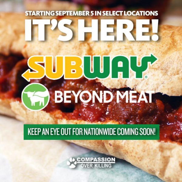 Meatball Marinara sub at Subway